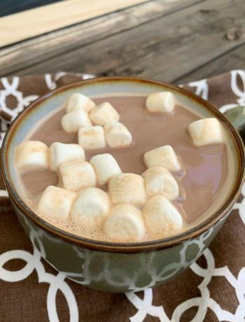 mug of hot chocolate with mini marshmallows